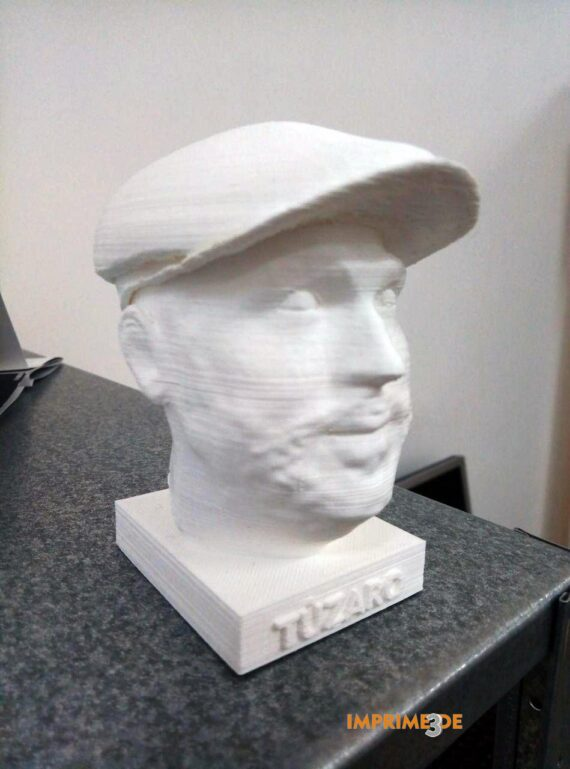 Busto Personalizado I3D