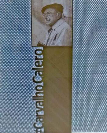 Marcapáginas Carvalho Calero I3D